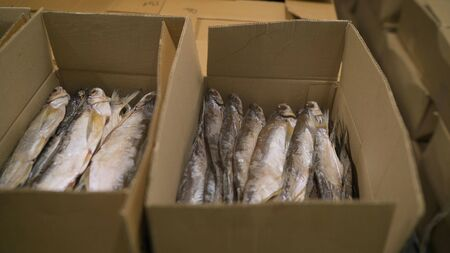 Large cardboard boxes in stock before shipping. Cardboard boxes with frozen fish. Fish production. Big fish packs fish in a cardboard box. Banque d'images