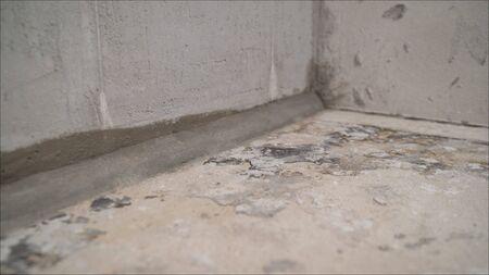 The concrete floor in the apartment is ready for processing. Ready floor level in the apartment. Freshly prepared floor with mortar. Concrete floor before work. Archivio Fotografico