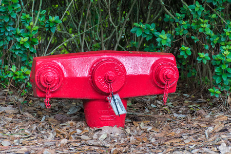 borne fontaine: Red fire hydrant am�ricaine