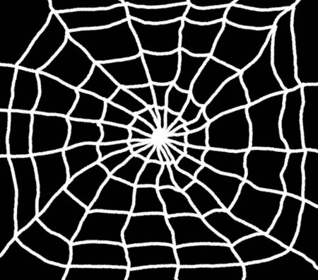 Hand drawn spiders web illustration. White web with a black background