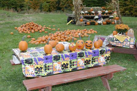 crearion: Hiram House Annual Pumpkin Festival. October 13, 2013. Pumpkin Painting Display