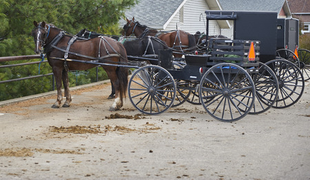 amish horse buggy tied to hitching post
