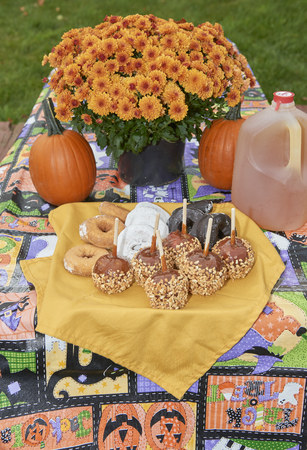 Halloween and Fall Season snacks and drinks laid out on picnic table Imagens