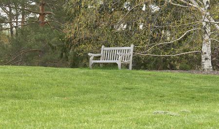 bench on grassy knoll