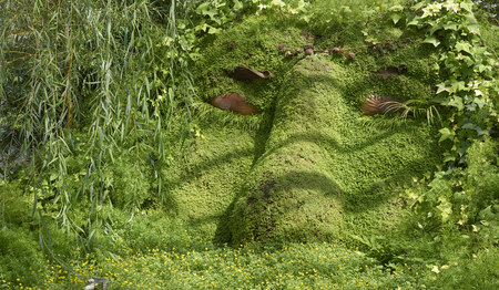 plant carving representing human face at Phipps Conservatory in Pittsburg, PA. USA