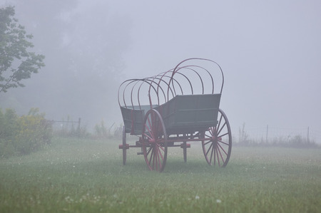 conestoga wagon, without canvas top, in meadow under heavy fog