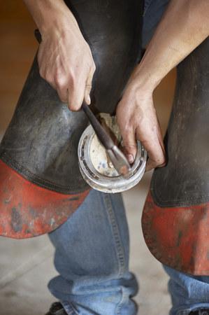 blacksmith nailing horseshoe to hoof Stock Photo