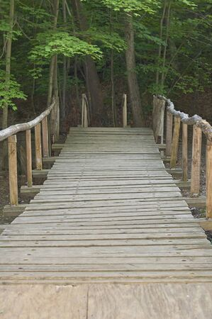 wooden bridge crossing creek to tent unit