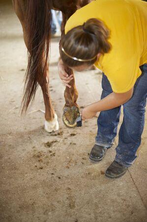 Hiram House Camp Ranch.  Horse shoeing Stockfoto