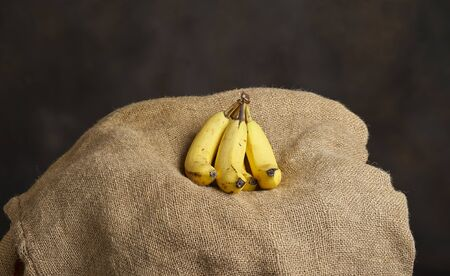 Yellow banana bunch photographed with burlap bag as backdrop. Studio shot.