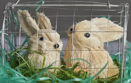 Easter Holiday Season cage of decorative bunnies to display on table