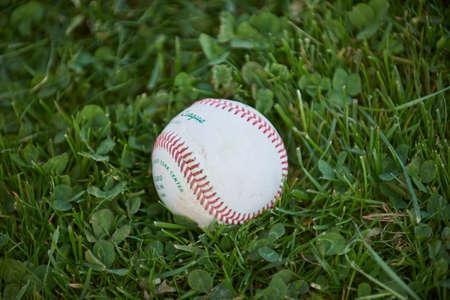 baseball laying in green grass