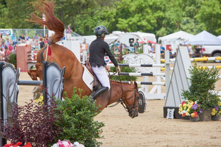 rider & horse clearing juming obstacle Banque d'images