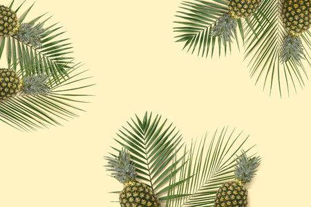 Top view  pineapple and kiwi flatlay. Summer minimal banner copyspace. Green palm leaves on the pastel background