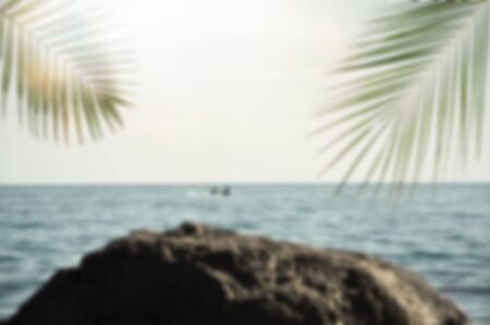 Blurred summer ocean with green palm leaves and sun. Defocused nature landscape