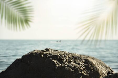 Blurred summer ocean with green palm leaves and sun. Big stone in focus Фото со стока