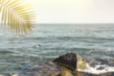 Blurred summer ocean with green palm leaves and sun. Defocused landscape