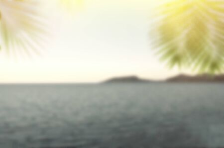 Blurred summer sea with green palm leaves and sun. Defocused landscape