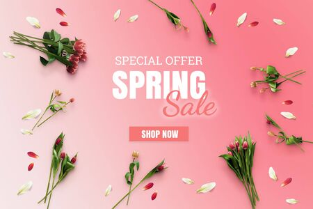 Spring sale banner. Special offer poster discount on the pink background with tulips flatlay top view. Flowers layout Фото со стока