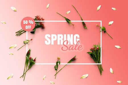 Spring sale banner. Special offer poster discount on the pink background with tulips flatlay top view and white frame. Flowers composition