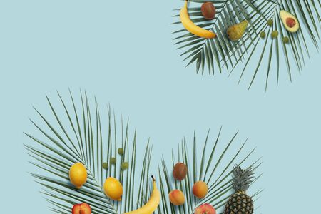 Summer fruits flat lay with copy space on the blue minimal background. Banana, lemon, peach, pineapple, kiwi, grape, avocado on the green palm leaves