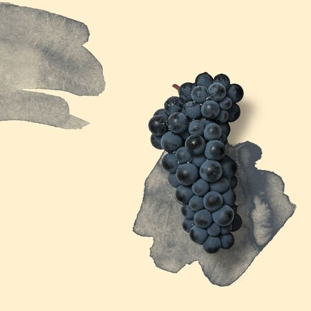 Blue grape on the pastel background with dark blue watercolor splash