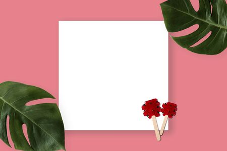 Summer banner with red lollipop and green leaves. Tropical concept with copyspace paper