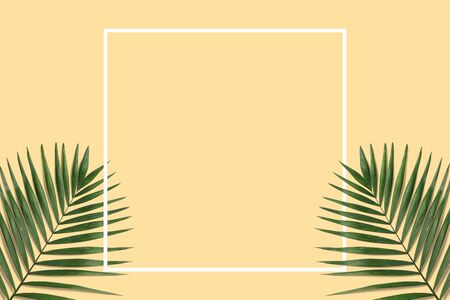Summer minimal banner with white frame. Green palm leaves on the yellow pastel background with copyspace