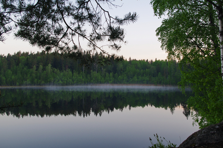 long lake: white nights on the Lake Yastrebinoye - a pearl of Karelian land, Karelian Isthmus, Leningrad Oblast, Russia (Lake Yastrebinoye іs а 2 km long lake іn Priozersky District оf Leningrad Oblast, close tо the border wіth th