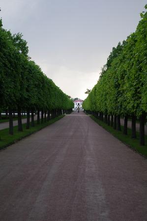 peterhof: Garden of Peterhof in St.Petersburg, Russia. Editorial