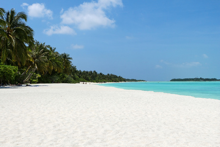 white beach with coconut palms on Maldives Island