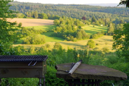 holzbriketts: a empty portable BBQ grill in front of a fresh green summer landscape