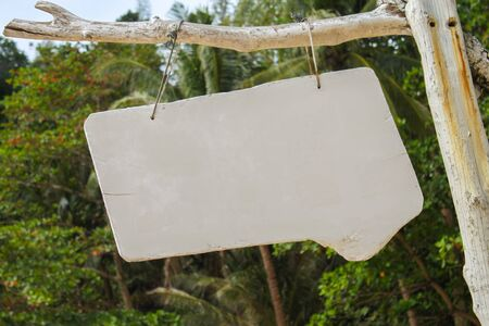 a white wooden sign hang on tree with nature background Stock Photo