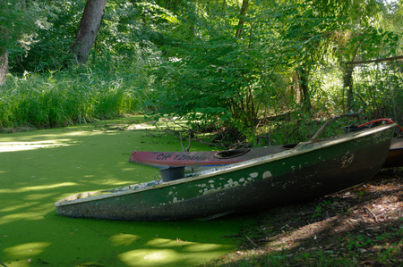 submerged: close up of part of green rowing boats submerged in water with leaves. Stock Photo