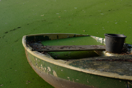 submerged: close up of part of green rowing boat submerged in water with leaves.