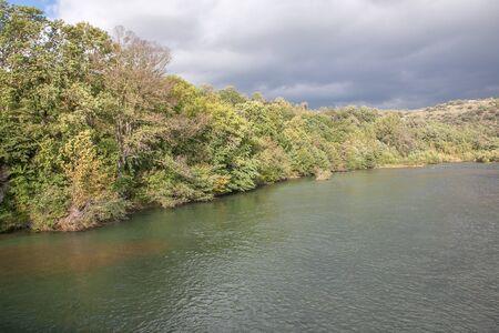 riverside trees: trees on the riverside Stock Photo