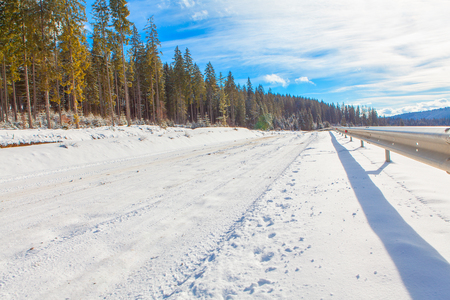 icy conditions: winter road along forest