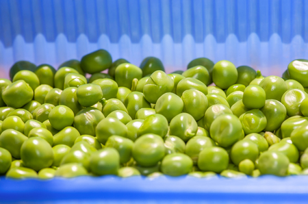 collected: collected peas