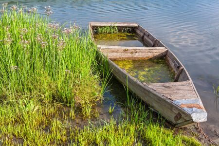 drowned: wooden abandoned boat