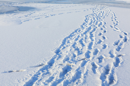 ski walking: footprints on the snow Stock Photo