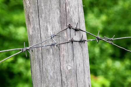 barbed wire column Stock fotó