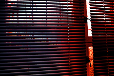 blinds at the window