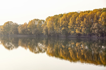 fall scenery with trees growing along the river 版權商用圖片