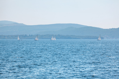 yachts with white sails in blue sea