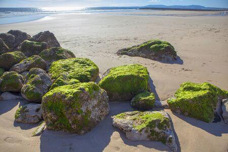mit Moos bedeckte Felsen am Meeresufer