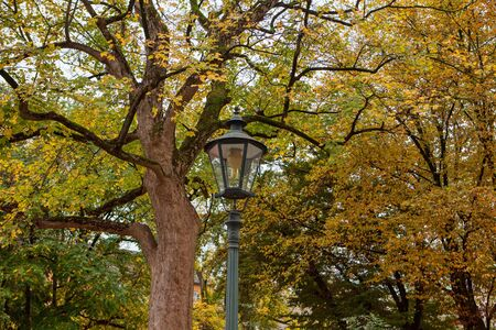 colorful autumn park with street lamp