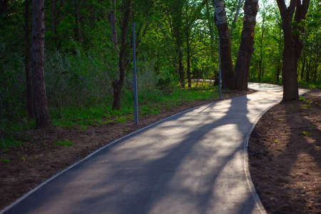 Asphalt pathway in the park  . Pedestrian road to nature 写真素材