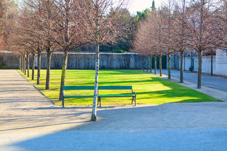 No People in the Spring Park . Green lawn and benches in the city park 免版税图像