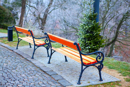 Empty benches with hoarfrost in winter Stok Fotoğraf - 154810641