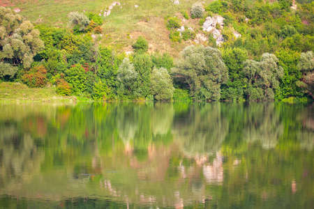Idyllic nature reflection in the water . Fresh green scenery